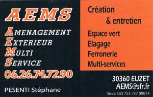 Logo-AEMS